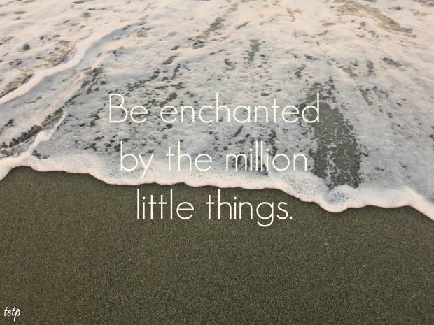 litterthoughts/poster12