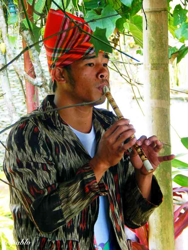 One of the performers playing traditional T'boli music.